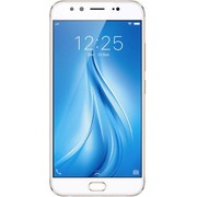 Vivo v5 Plus Price in India on 5th July 2017 at poorvika